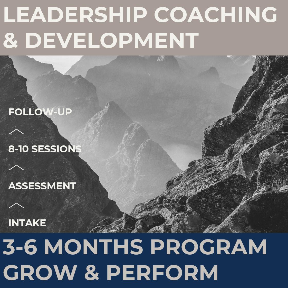 leadership coaching development executive assessment