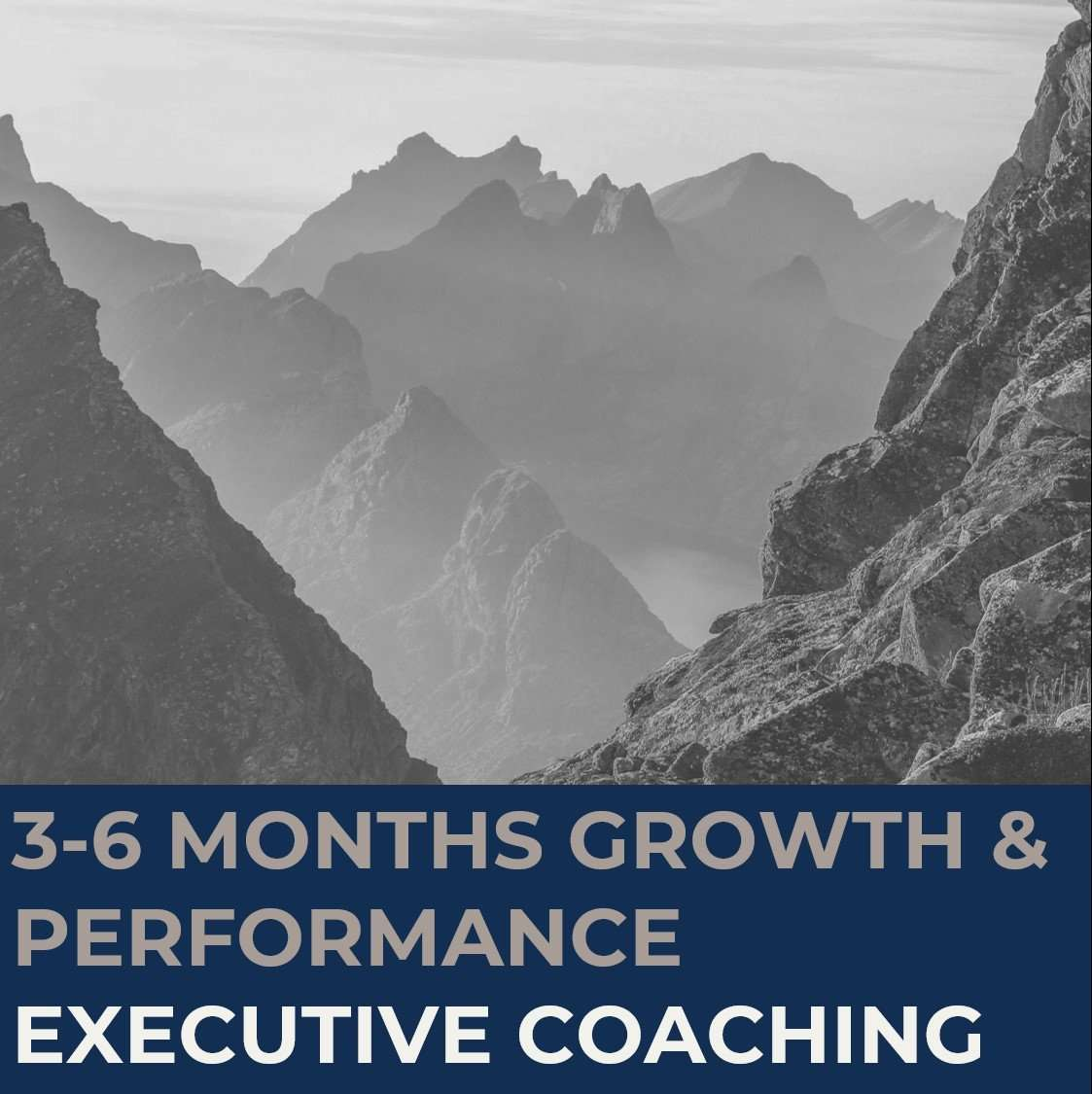 STRATZR.com Executive Coaching Programs for Growth & Performance