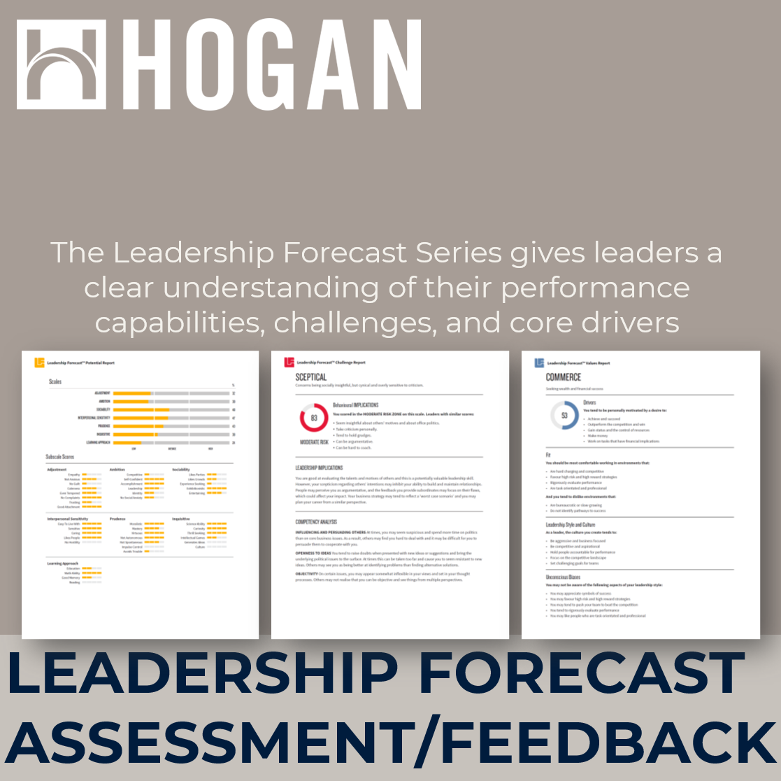 leadership coaching development executive assessment