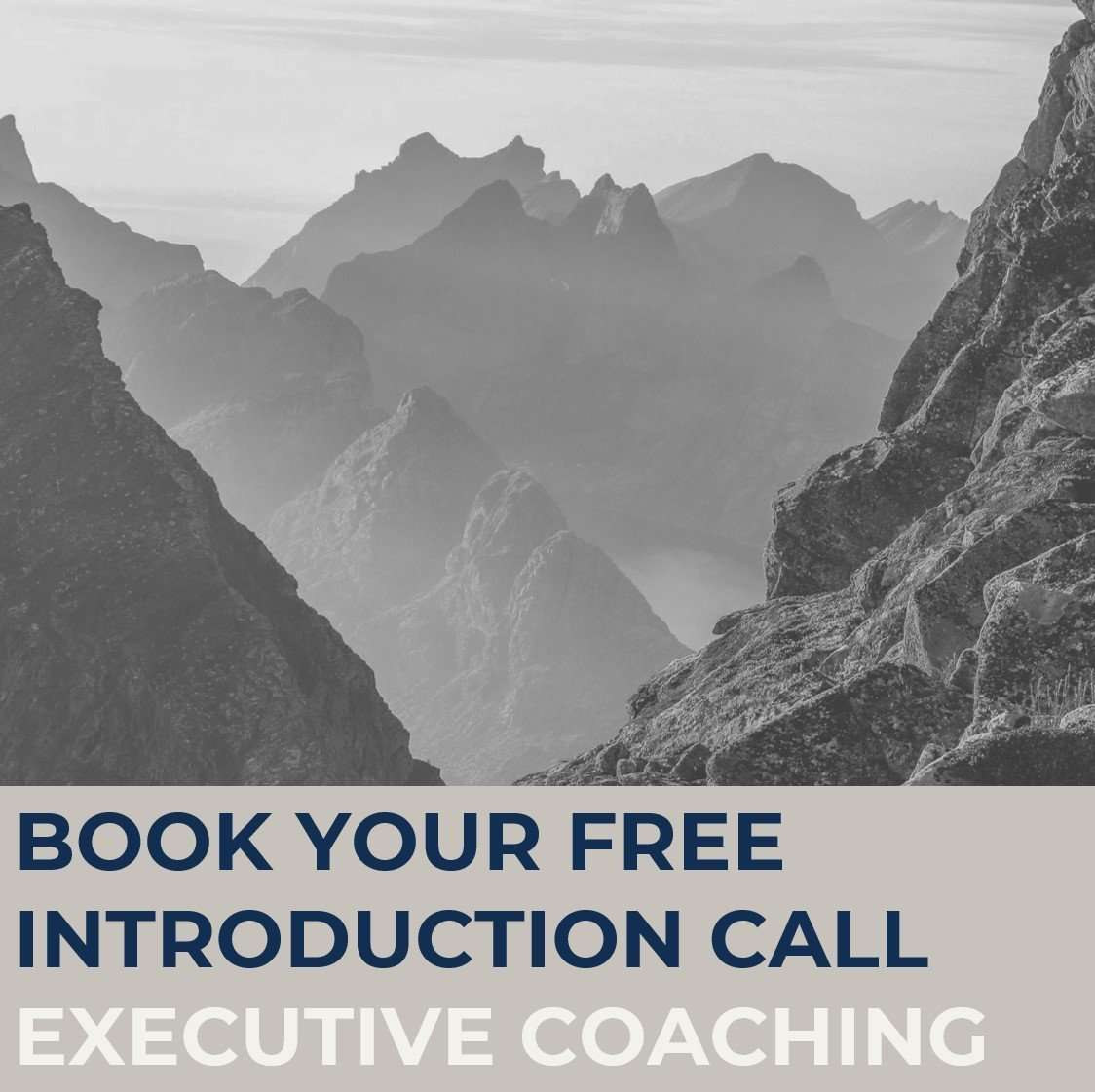 Free introduction call STRATZR.com
